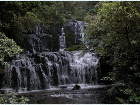 There are several spectacular waterfalls within driving distance of Kaka Point. Pictured is the significant Purakunui Falls only five minutes walk from the road.